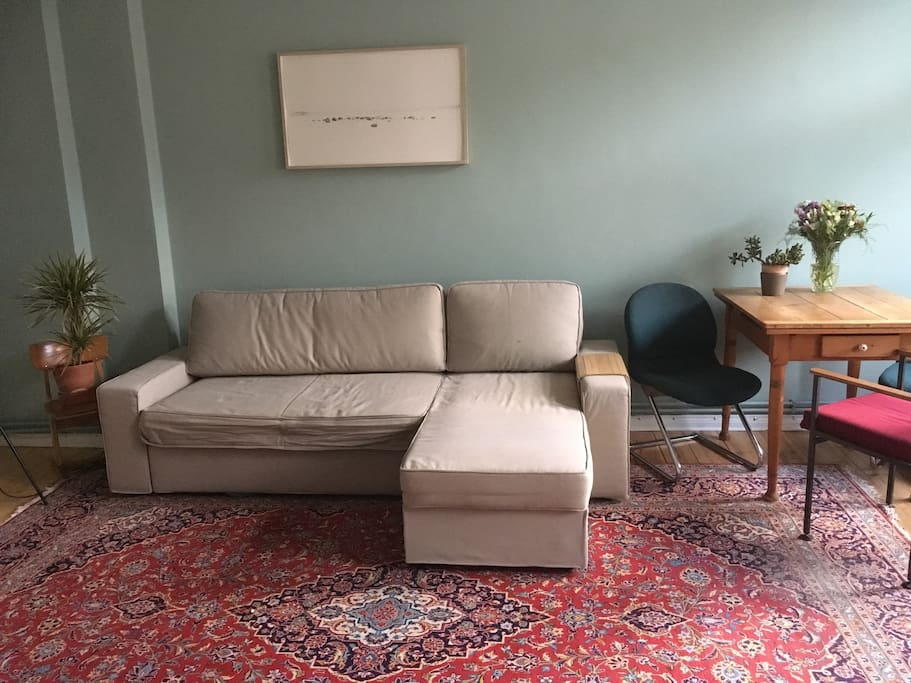 Living room with sleeping sofa