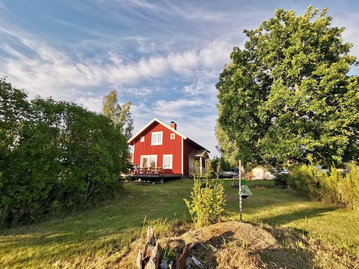 Lerviken modern cottage in the woods near lake