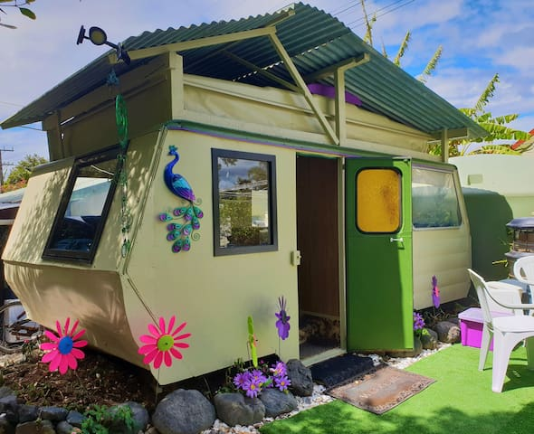 "Oakura Bay ""Funky Caravan""-  Cheap Top location"