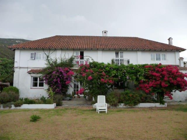 Apartamento para alquilar - El Bujeo - Apartmen