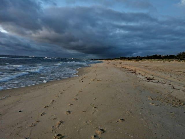 Seaford Sun Sea and Serendipity. Beach side fun