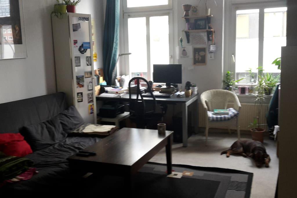 Wohnzimmer mit Schlafcouch (ausziehbar)