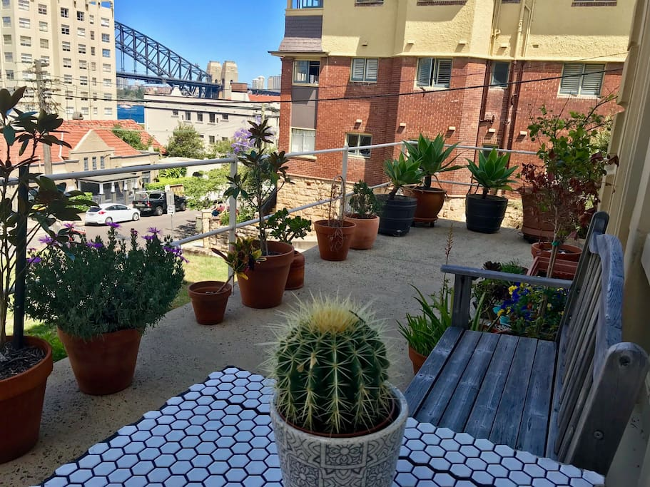 Relax amongst the urban garden overlooking the harbour