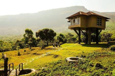 Tree Hut Resort