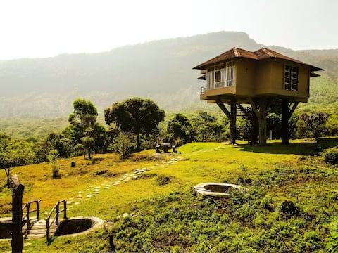 Tree Hut Kanthalloor