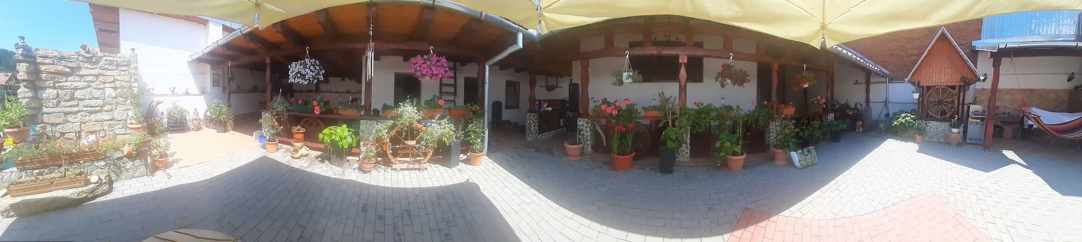 Mehadica House