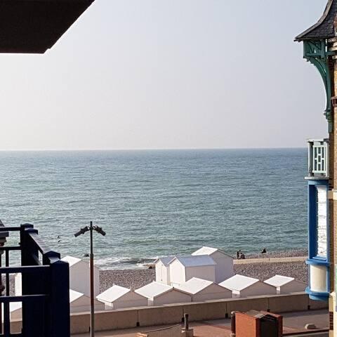 Hydrangea appt vue mer/balcon (20m de l esplanade)