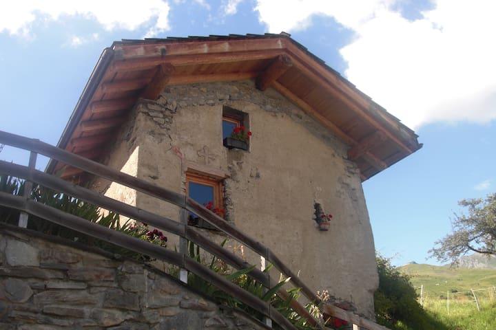 Petit chalet typique savoyard - Bourg-Saint-Maurice - Alpehytte
