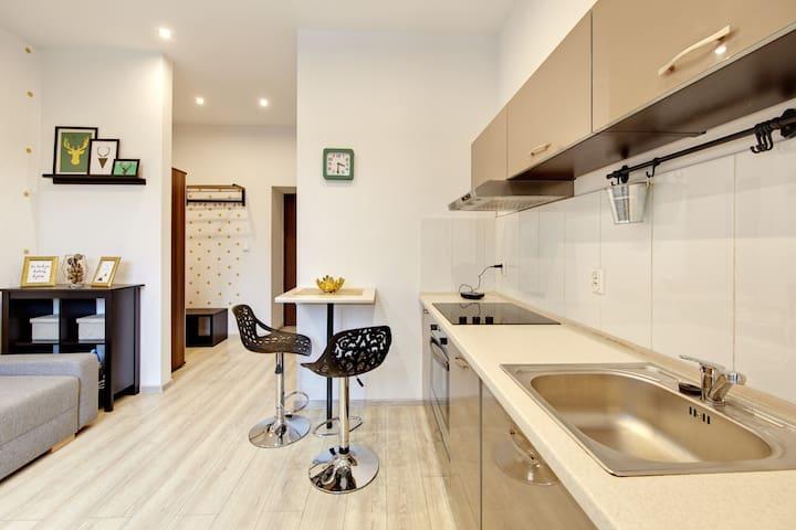 Wspaniały apartament w centrum Katowic