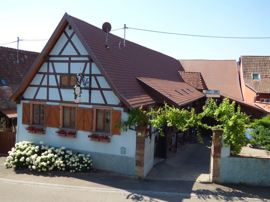 Maison Alsacienne (appartement au fond)