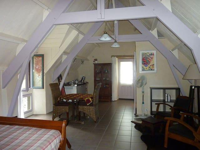 Maisonnette typique du causse - Villefranche-de-Rouergue - Dům