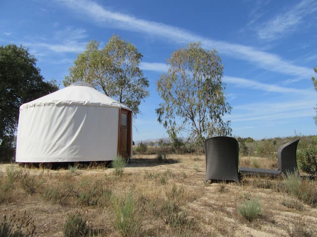 Yurt with beautiful views in rural setting