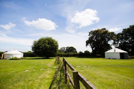 The Little Yurt Meadow - Bronington Whitchurch - Yurt