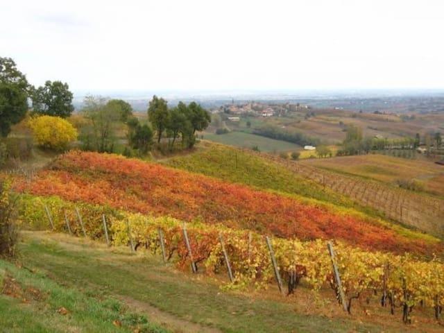 La Petite Toscane: entre Art, Histoire et Nature - Sala Mandelli - House