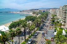 Cannes croisette apartments