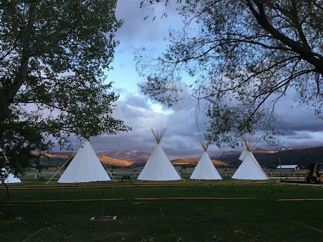 Teton Valley Resort & Campground/Small Tipi 32