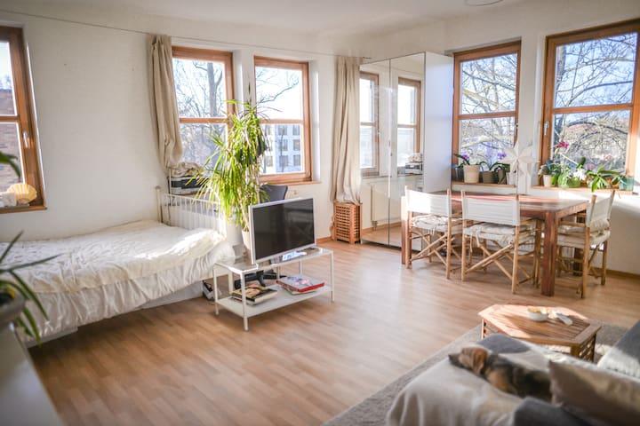 sehr helle Wohnung nur 5 Minuten weg von Allem :) - Potsdam - Leilighet
