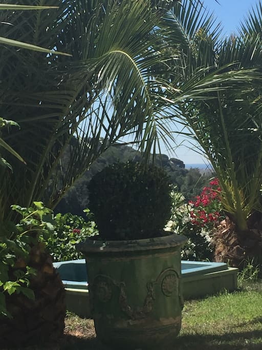 Le jacuzzi a l'ombre des palmiers avec vue sur la mer..