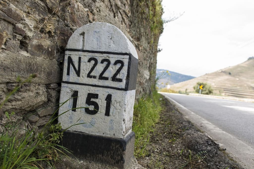N-222 : the World's Best Driving Road