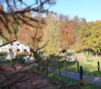 gîte spacieux en pleine forêt des vosges du nord - Soucht - Apartment