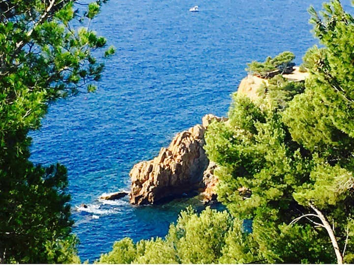 Calanque Provence grt seaview villa  pool 5mnbeach