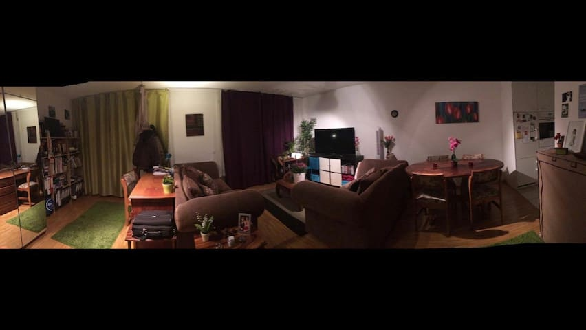 Modern 2 room apartment in Basel - Pratteln - Apartamento