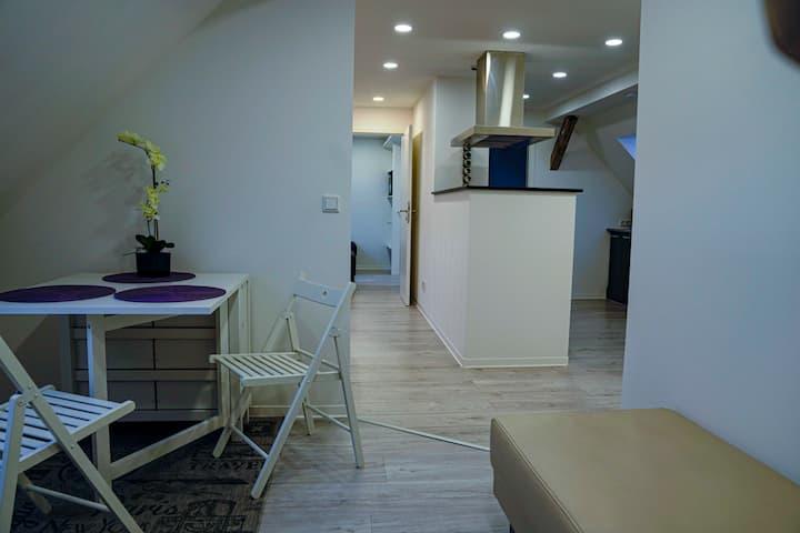 Appartement/ Ferienwohnung /Monteurwohnung Greppin