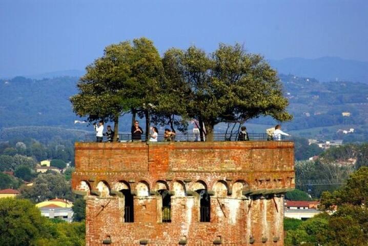 Casa vacanze lucca  Toscana