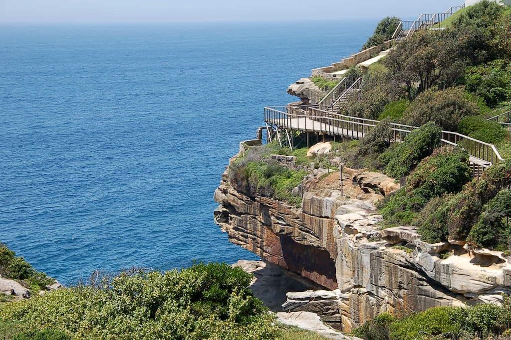 Diamond Bay Reserve walk way