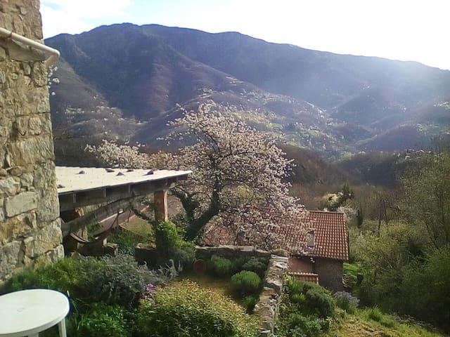 Hameau dans les monts d'Ardèche (bis)