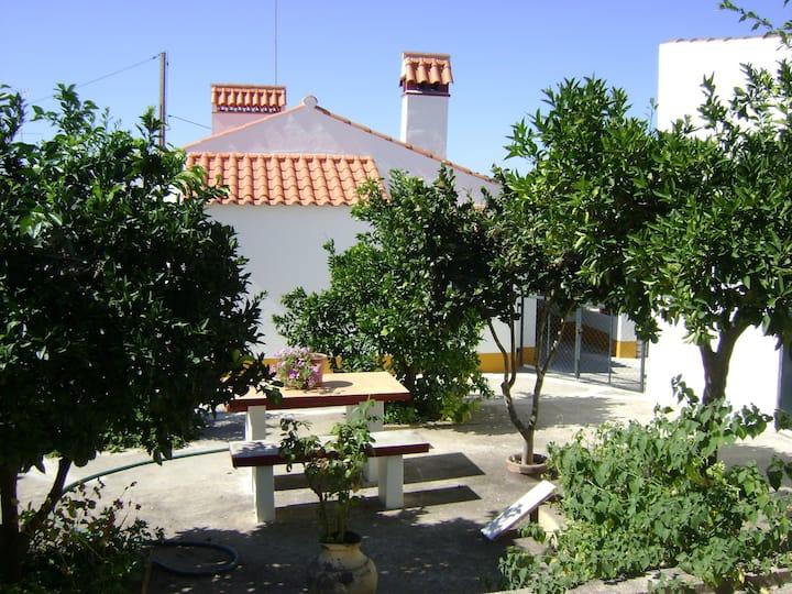 Tapada da Beira  - Small house