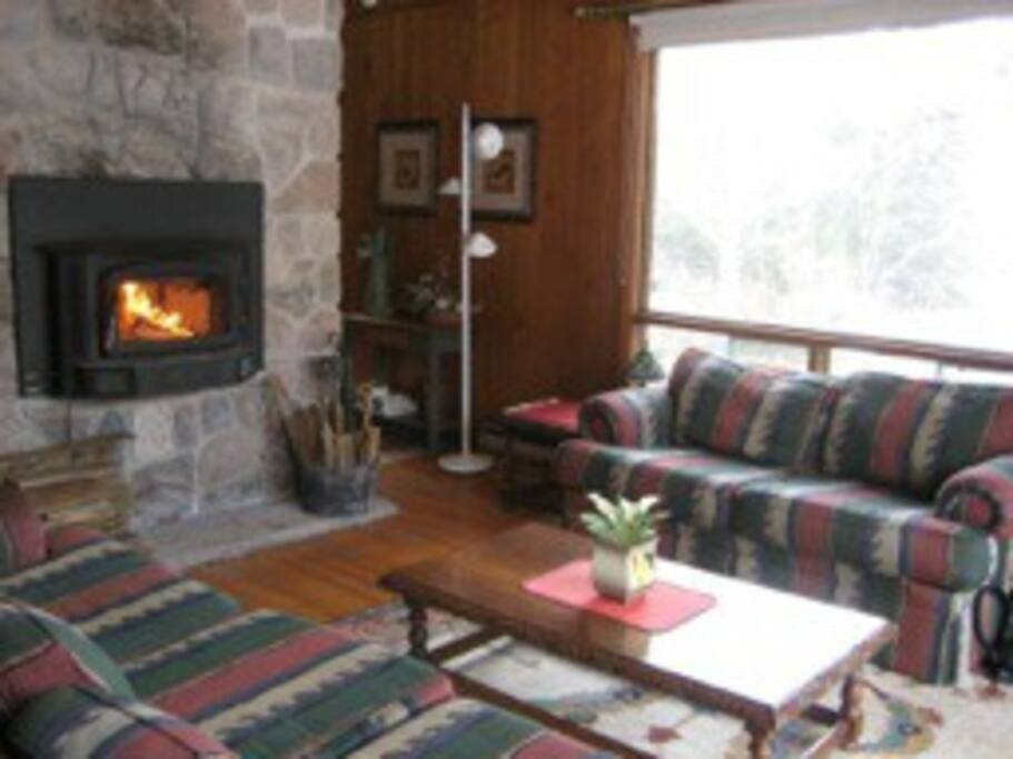 Sun filled living room with a safe and warm wood fire insert.