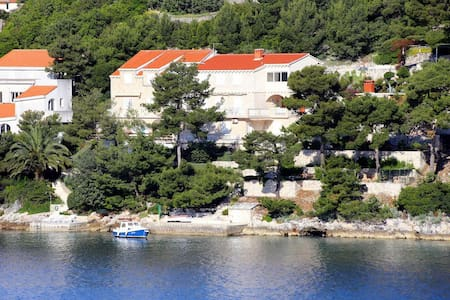 One bedroom apartment near beach Račišće, Korčula (A-165-b) - Račišće