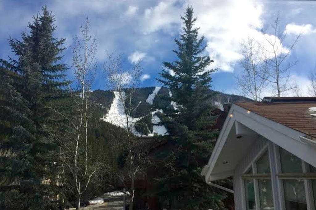 Spacious 4 Bedroom Sun Valley Home Houses For Rent In Ketchum Idaho United States