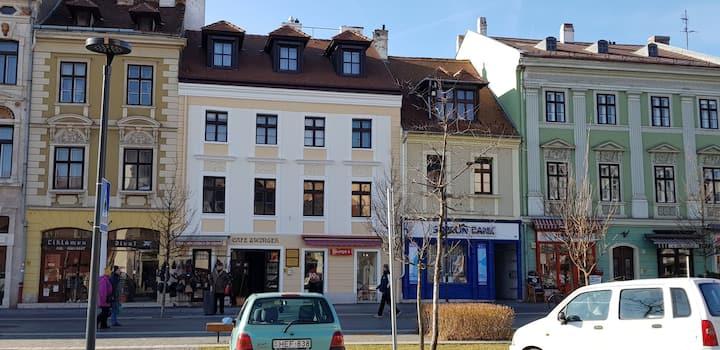 LUNA City Apartment
