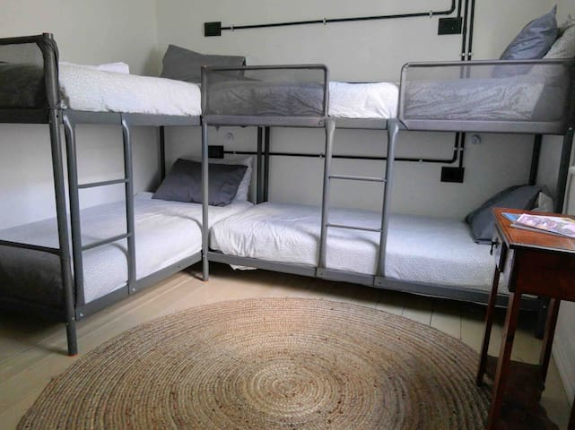 Bunk Bed 3 at Birds of a Feather Lockington