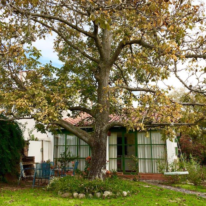 ¡Hola, Siesta! Les damos la bienvenida a nuestra pequeña y delicada casa de huéspedes en el centro de La Cumbre, un hermoso pueblo en las sierras de Córdoba.