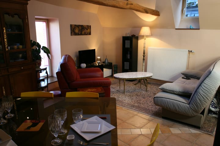 appartement meublé 52m2 au calme centre historique - Laon - Leilighet