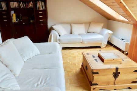 005 Nice apartment 5 min from Nyon - Chéserex - Pis