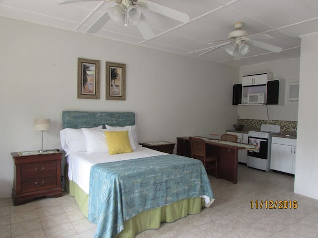 Cool and comfortable Studio - Guanacaste Province - Apartment