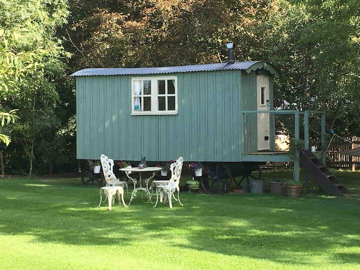 Somerset Shepherd's Hut Holidays