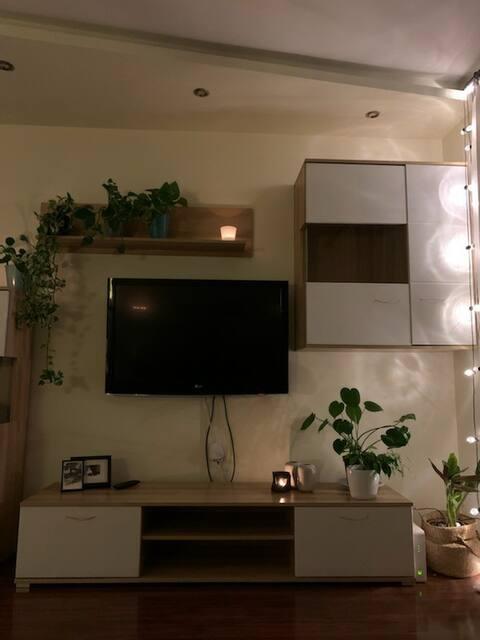 Apartamento moderno en el centro de Skierniewice