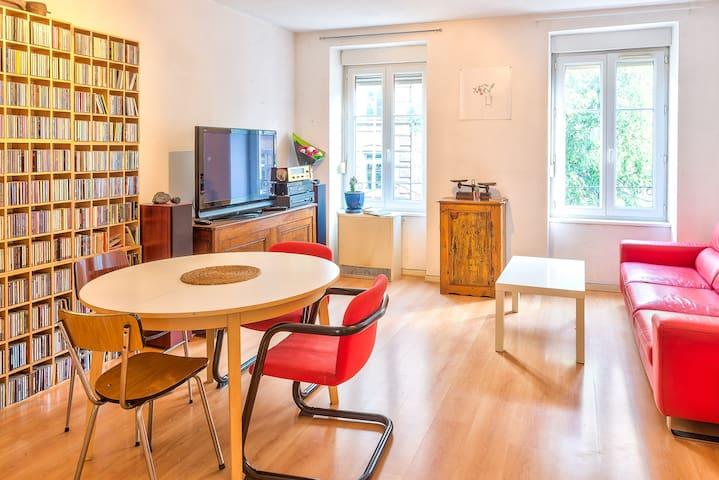 Spacious and comfortable Apartment - สตราสบูร์ก