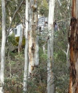 Off grid snowy mountains cottage stunning acreage