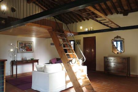 Magico Loft sui tetti lucchesi - Lucca