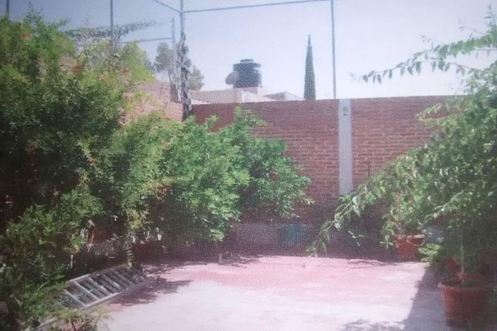 Habitación privada con baño y acceso al jardín terraza
