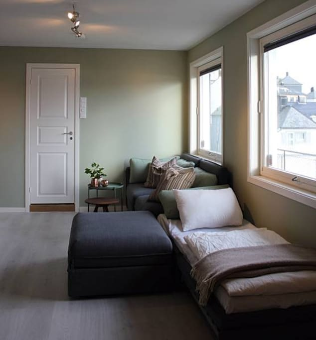 Living room with single bed option