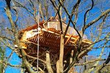 """Cabane perchée """"Au Bois d'Emma & Loue"""" Tree house"""