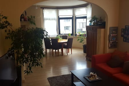 Leuk, groen en gezellig appartement in Deurne. - Antwerpen - Huoneisto