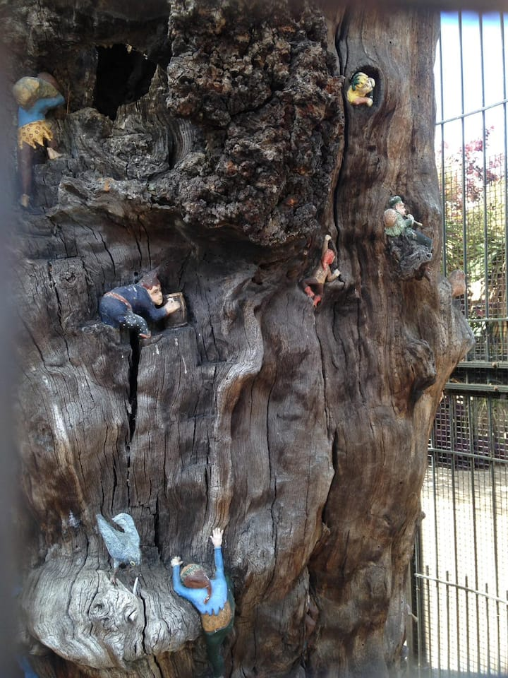Kids will love the famous Elfin Oak